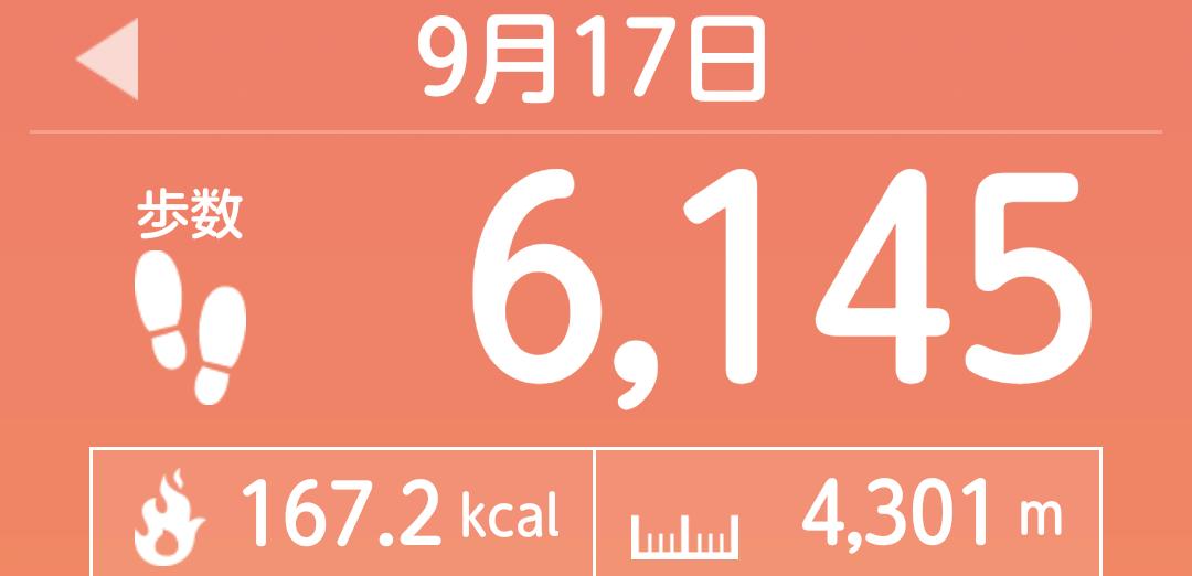 f:id:toyamayama:20210918034551p:plain