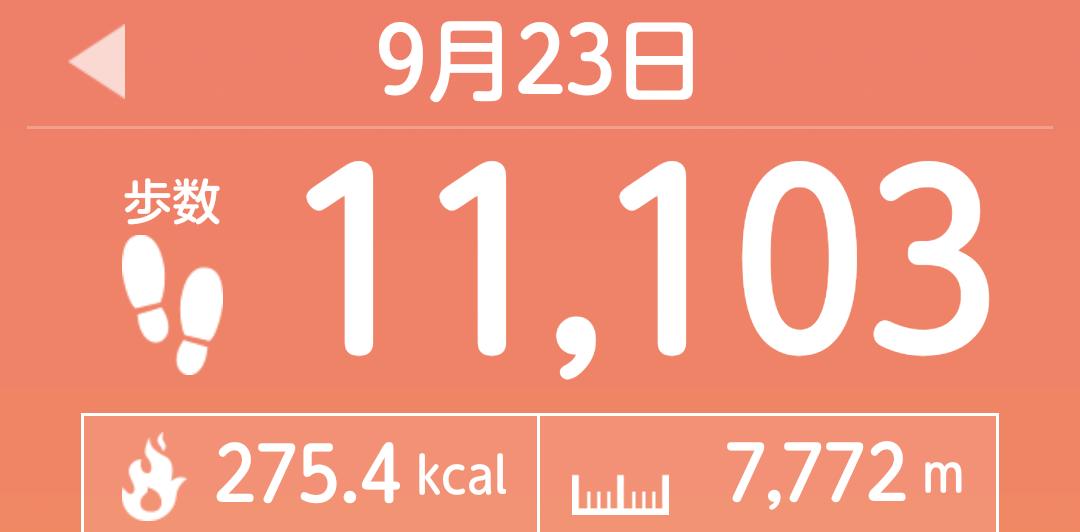 f:id:toyamayama:20210923143135p:plain