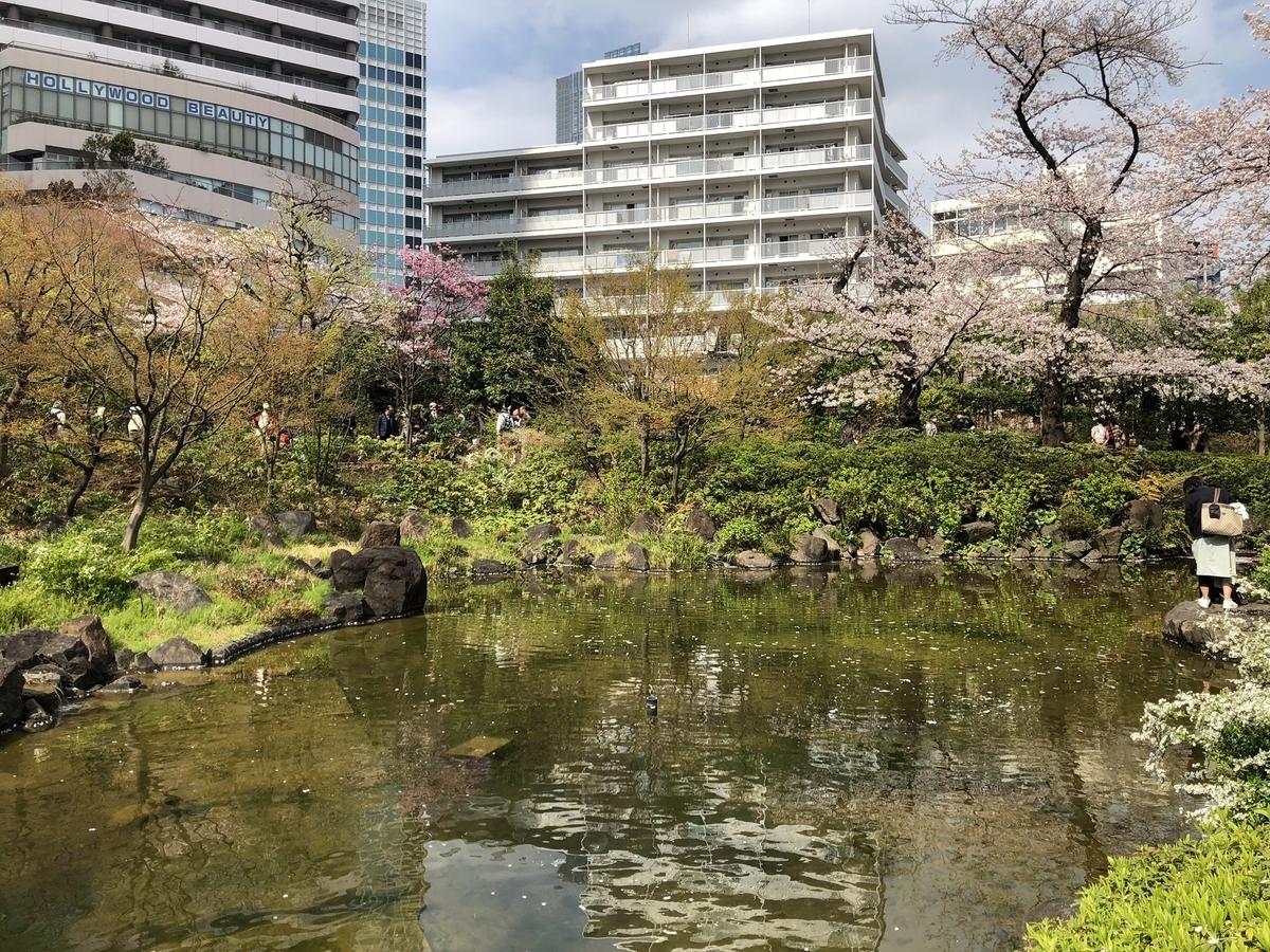 毛利庭園と桜と池
