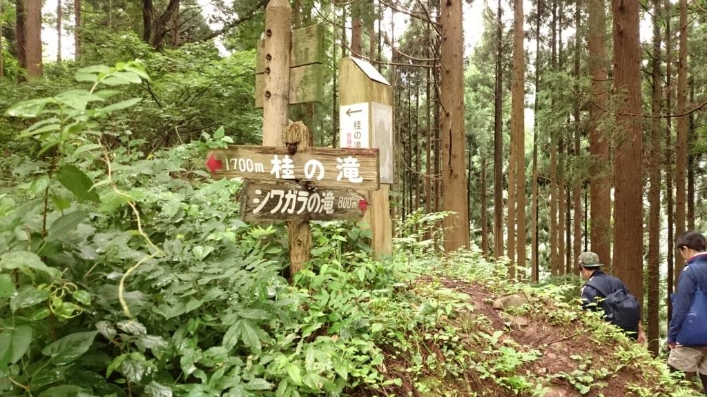 f:id:toyohisa-masuya:20170908173811j:plain