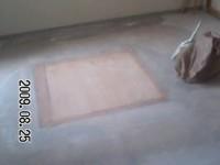 f:id:toyokosan:20090825114846j:image:left