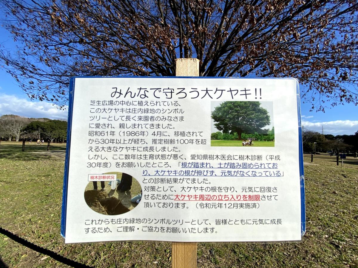 f:id:toyoshi:20200527201237p:plain