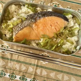 メスティン鮭飯
