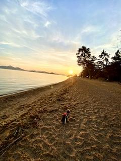 朝日と琵琶湖