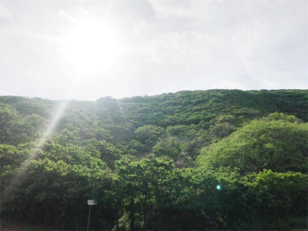f:id:tozu-kanade-maki:20180531232915j:image