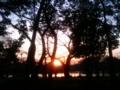 夕凪の池 #photo