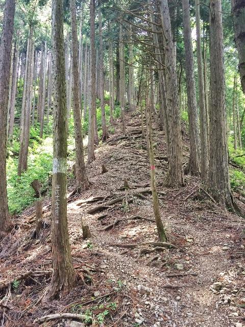 f:id:trail1048:20150526095941j:image