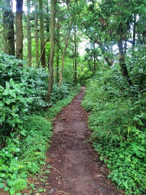 f:id:trail1048:20150607112714j:image