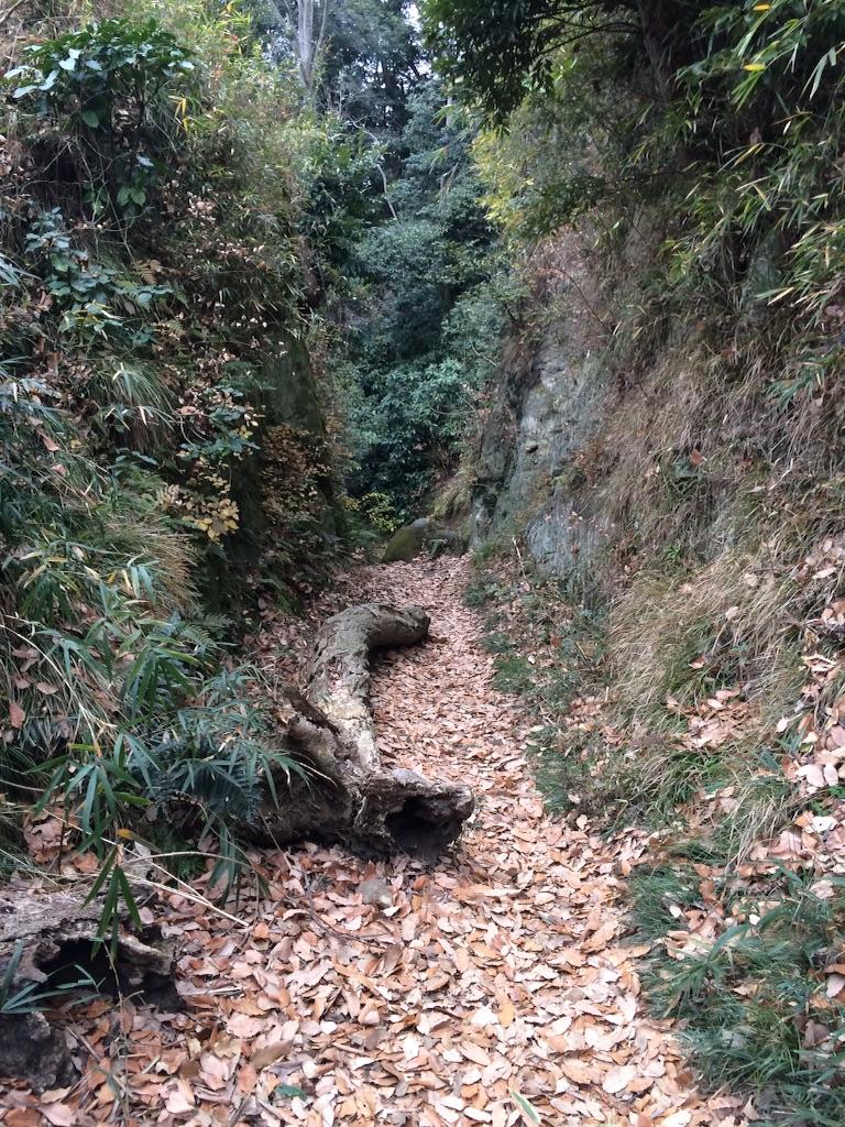 f:id:trail1048:20160119085018j:image