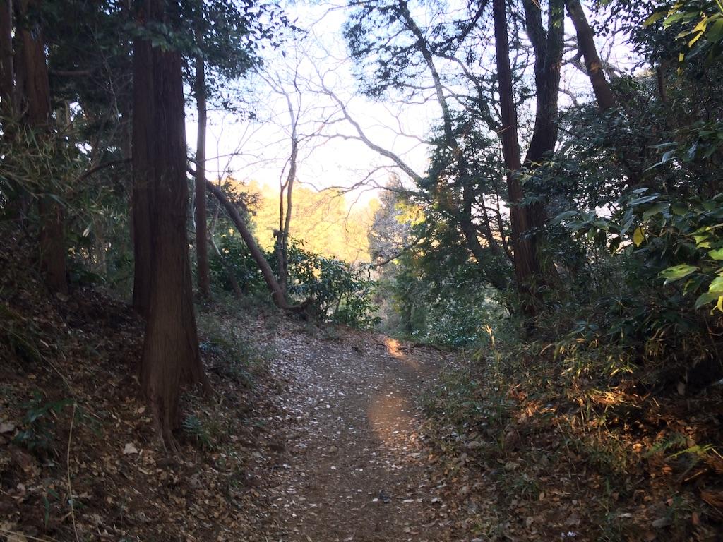 f:id:trail1048:20160229111551j:image