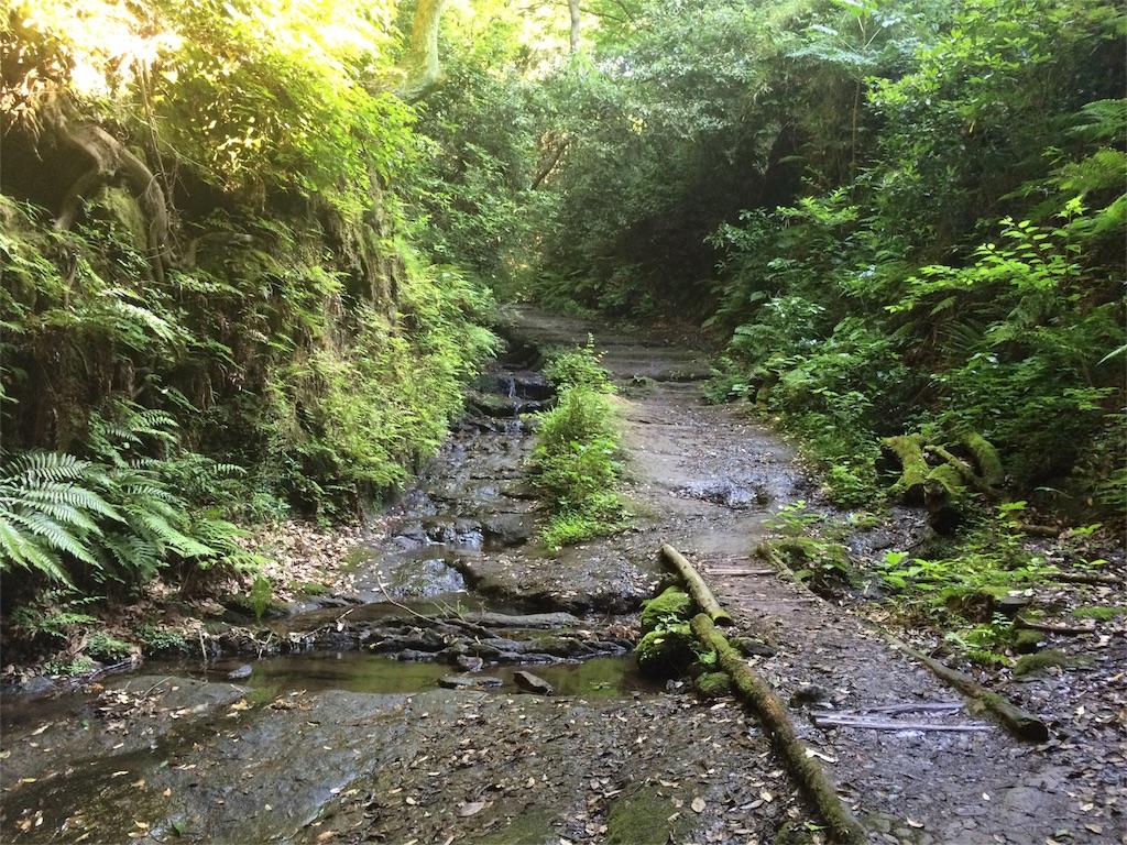 f:id:trail1048:20160617083245j:image