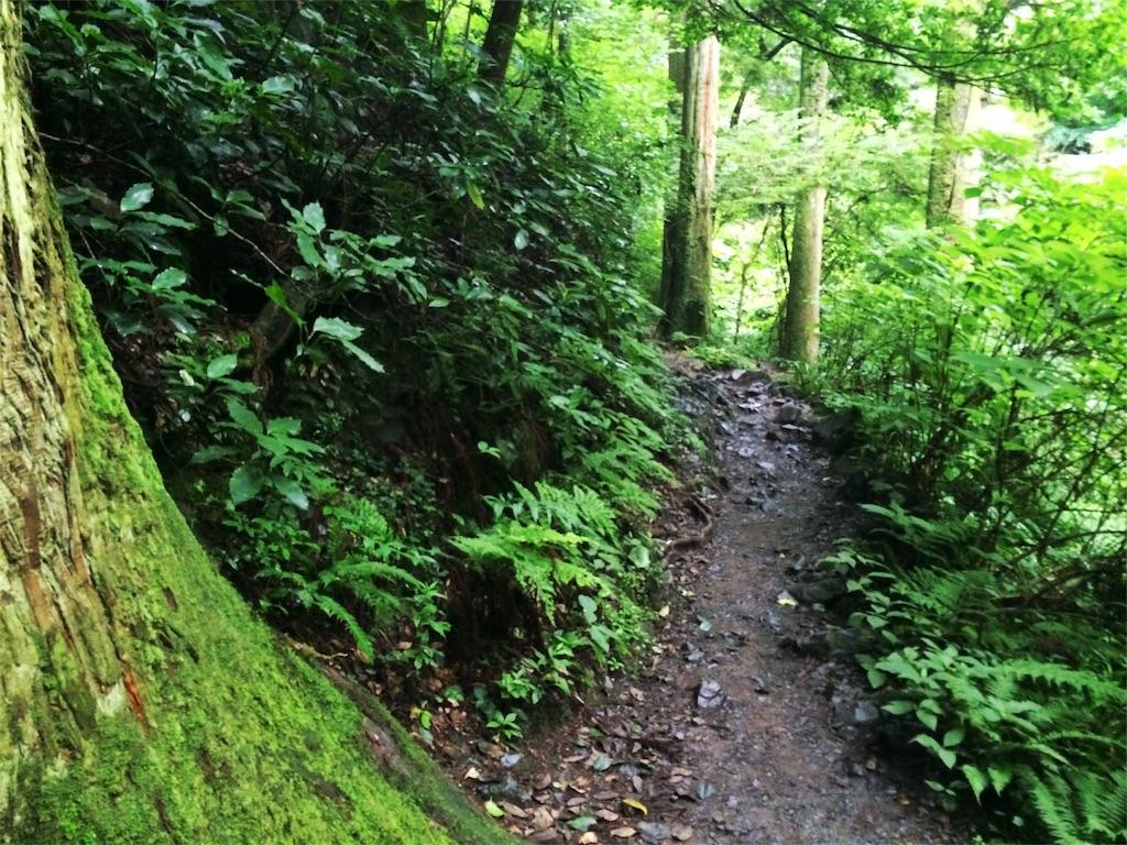 f:id:trail1048:20160801091712j:image