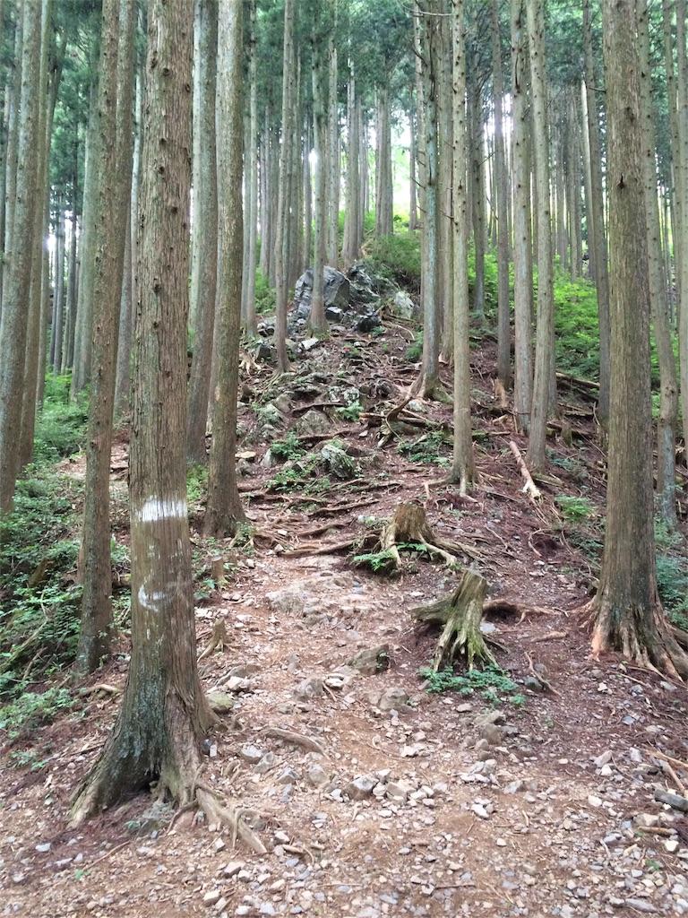 f:id:trail1048:20160831174343j:image