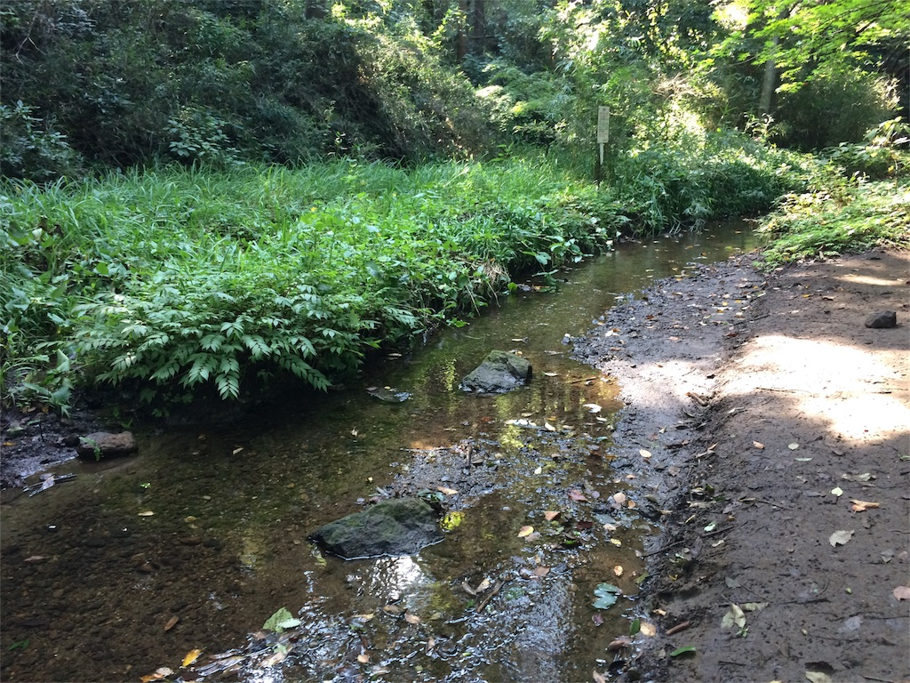 f:id:trail1048:20160912093232j:image