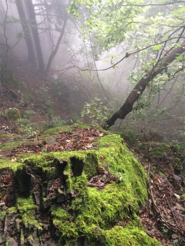 f:id:trail1048:20160919221636j:image
