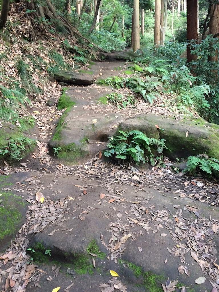 f:id:trail1048:20161124084052j:image