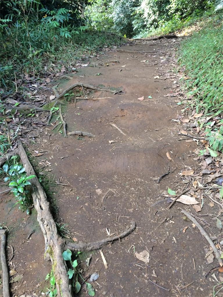 f:id:trail1048:20161124084105j:image