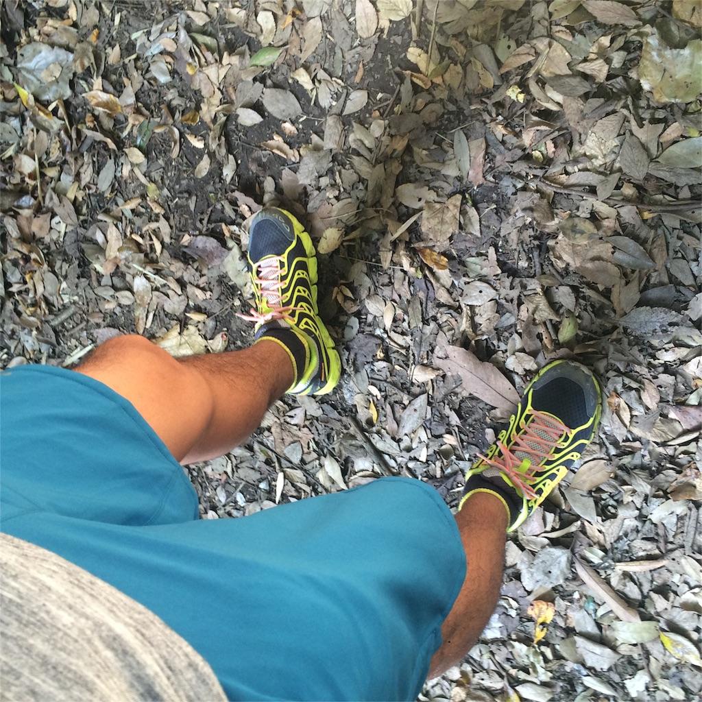 f:id:trail1048:20161127124830j:plain