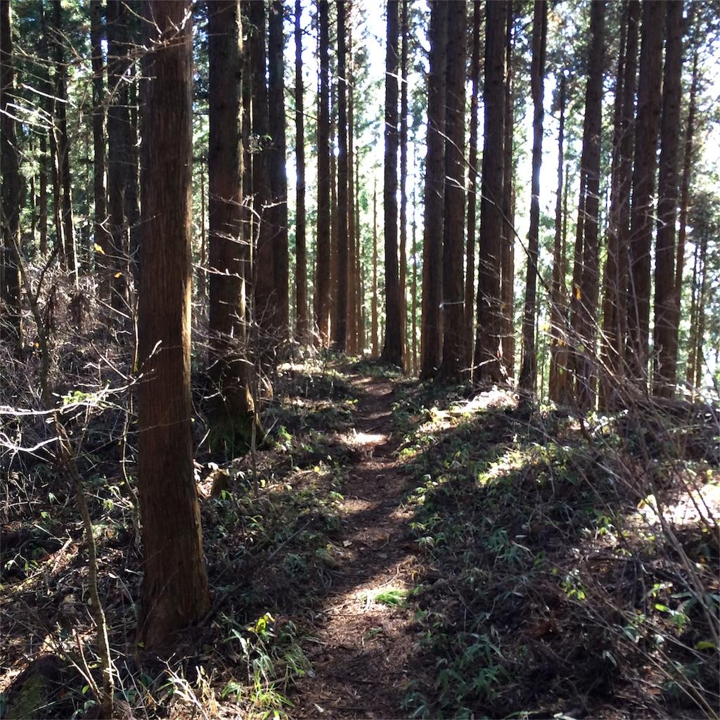 f:id:trail1048:20161230072801j:image