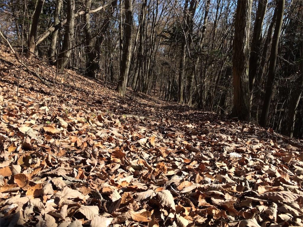 f:id:trail1048:20161230072930j:image