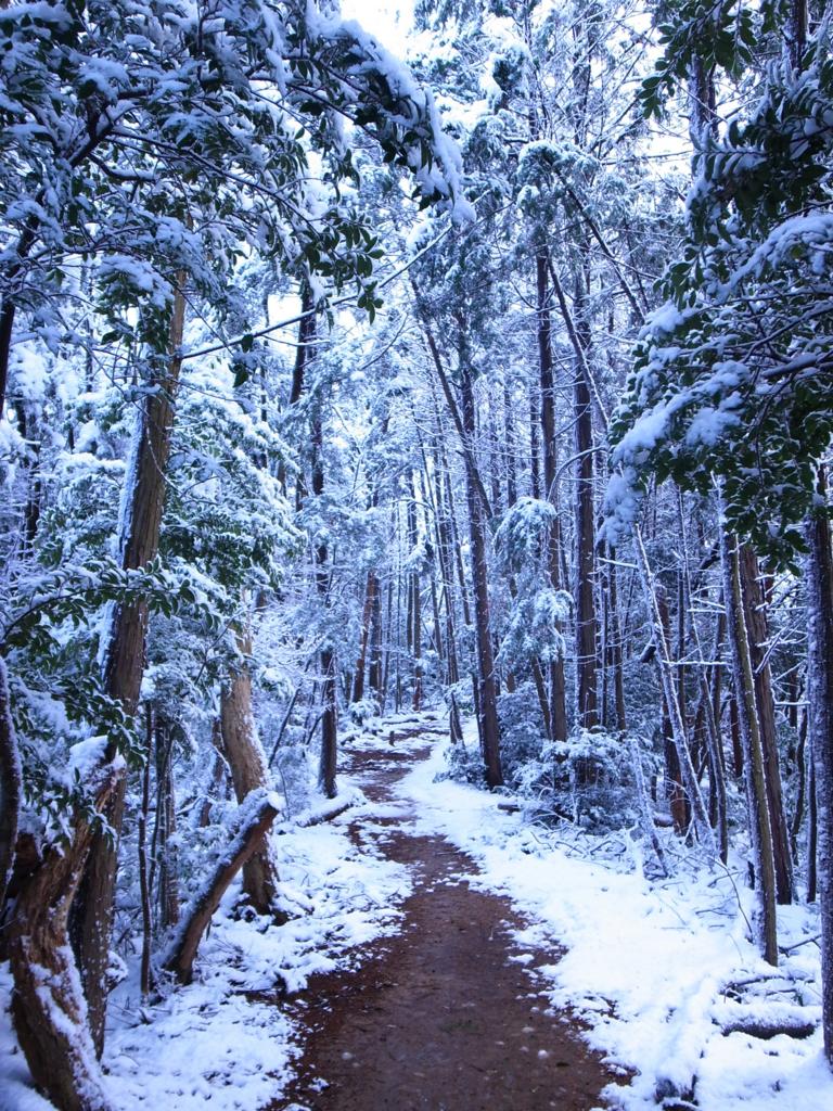 f:id:trail1048:20170206150306j:plain