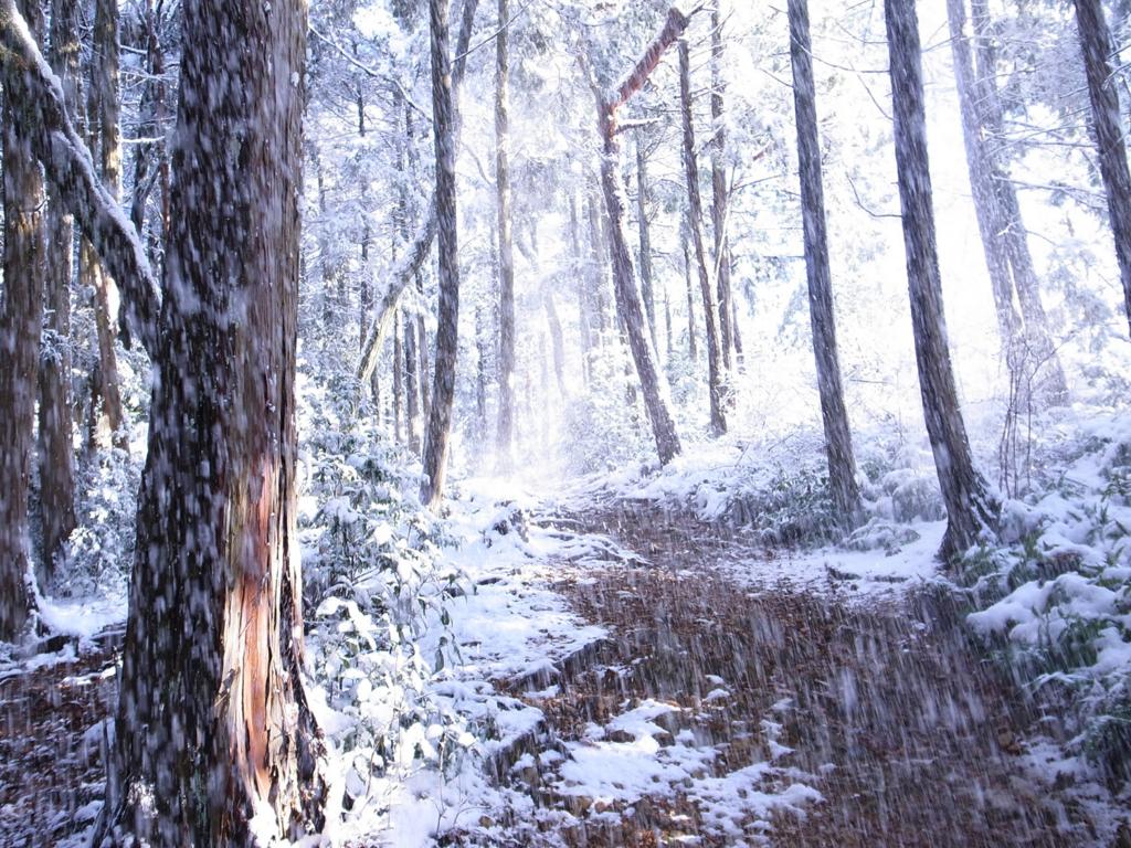 f:id:trail1048:20170206150457j:plain