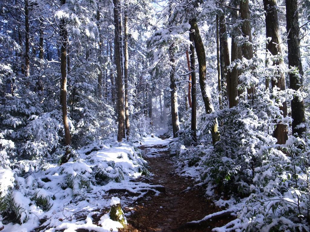f:id:trail1048:20170206150643j:plain