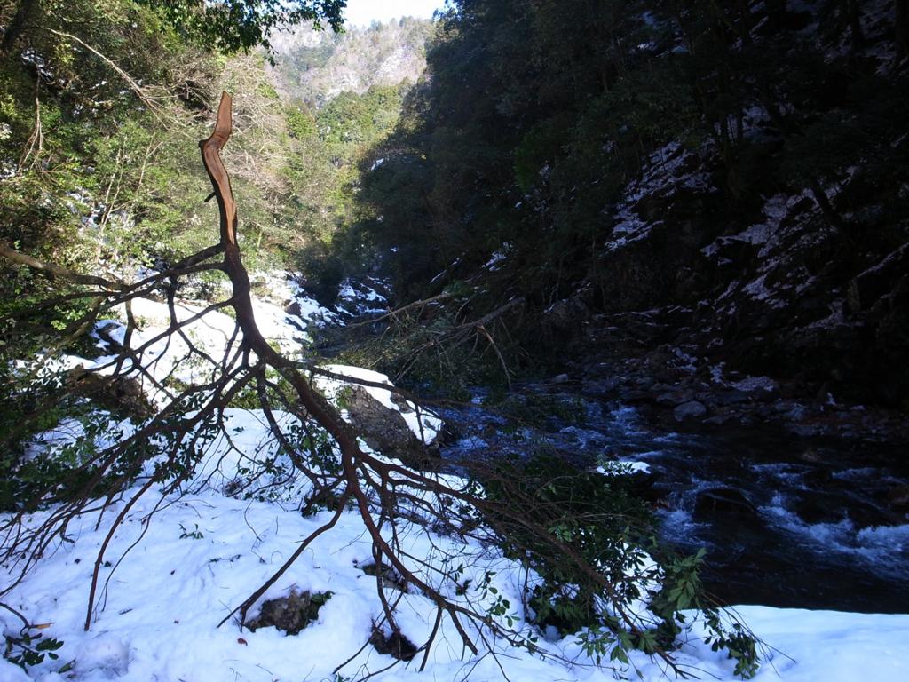 f:id:trail1048:20170207075315j:plain