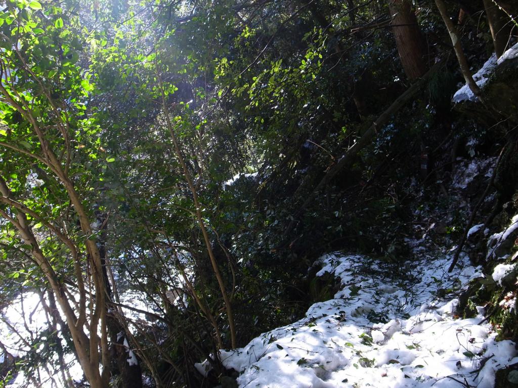 f:id:trail1048:20170207075343j:plain