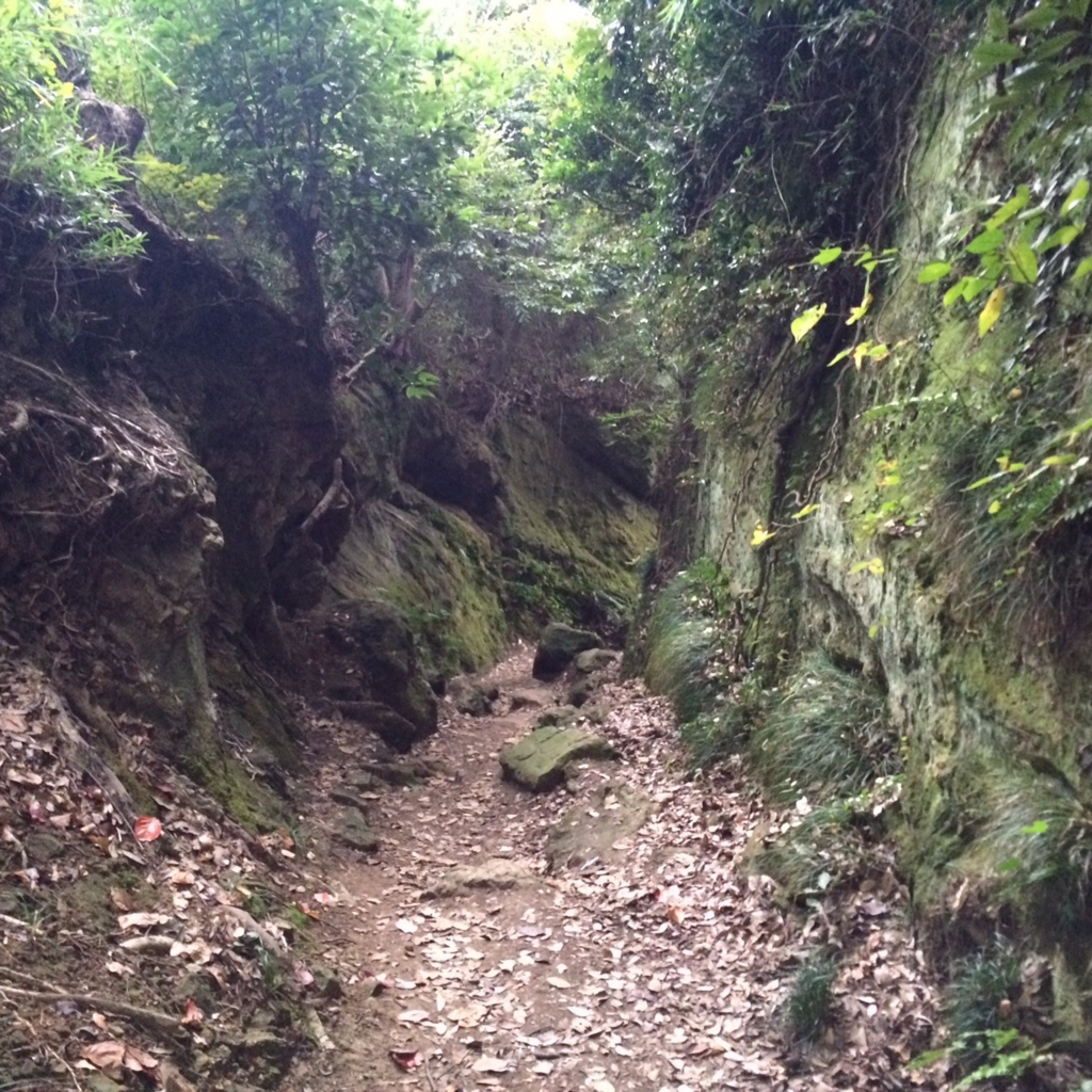 f:id:trail1048:20170321113751j:plain