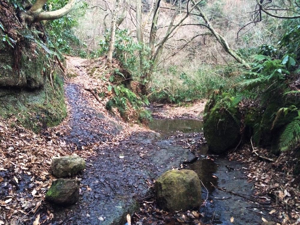 f:id:trail1048:20170324101545j:plain