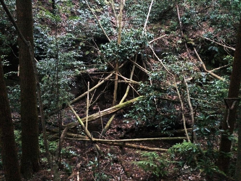f:id:trail1048:20170324102002j:plain