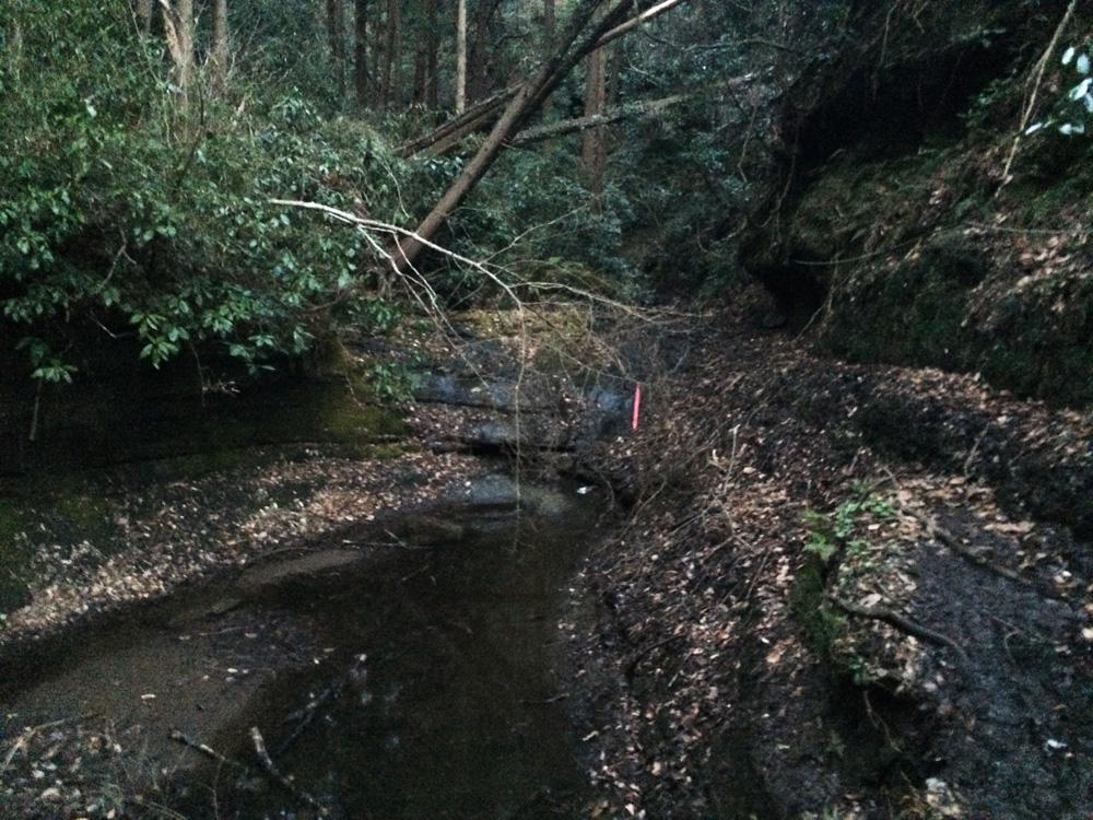 f:id:trail1048:20170324104535j:plain