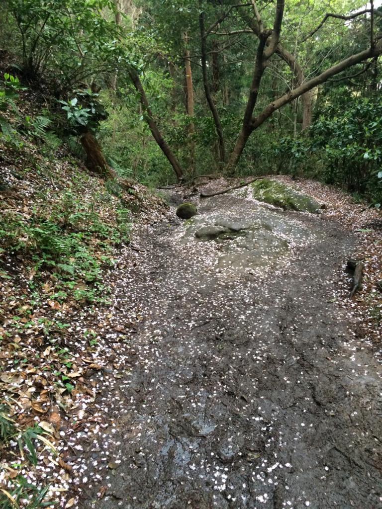 f:id:trail1048:20170413165611j:plain