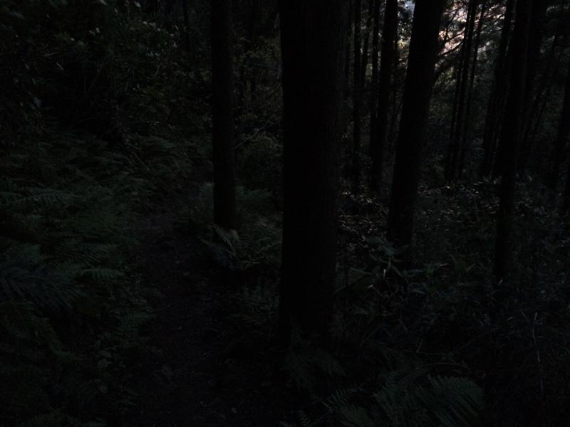 f:id:trail1048:20170421082138j:plain