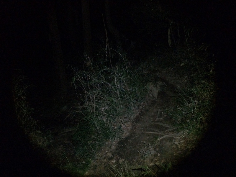 f:id:trail1048:20170421082148j:plain