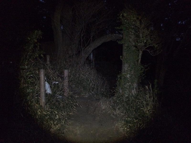 f:id:trail1048:20170421082150j:plain