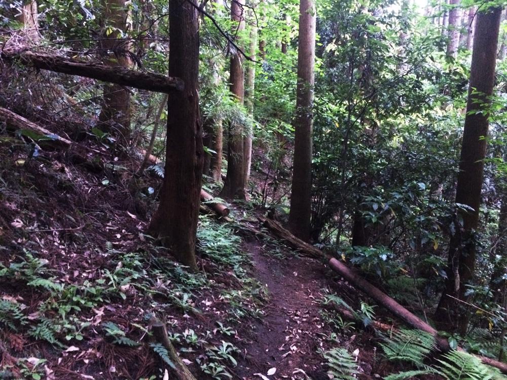 f:id:trail1048:20170523082753j:plain