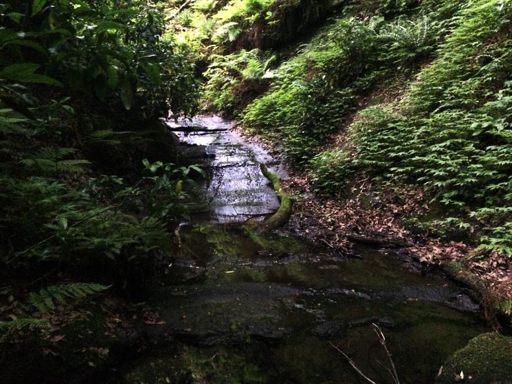 f:id:trail1048:20170523082804j:plain