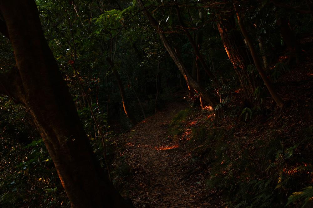 f:id:trail1048:20170605093227j:plain