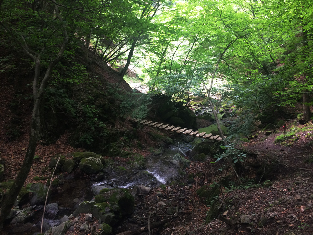 f:id:trail1048:20170626141522j:plain