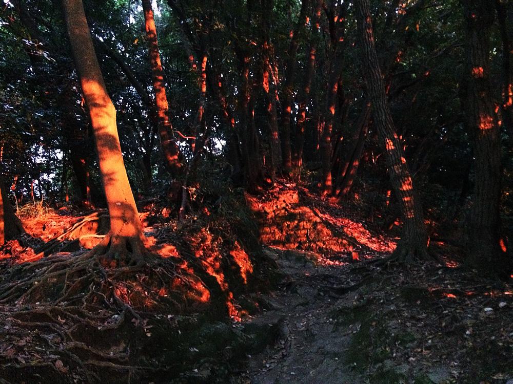 f:id:trail1048:20171105082550j:plain