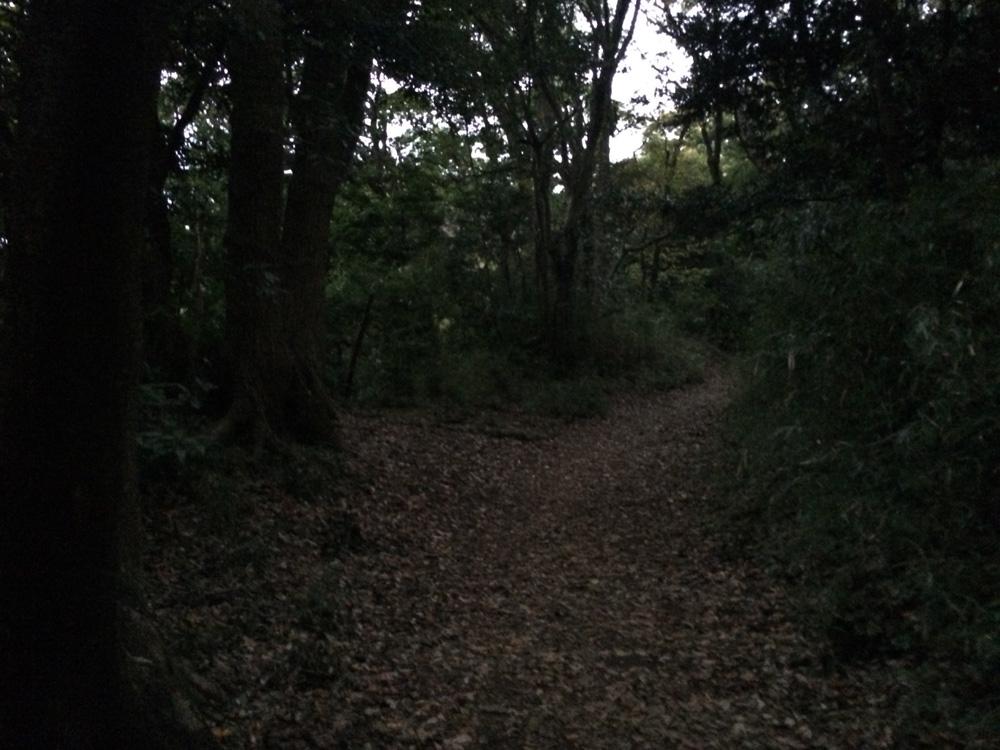 f:id:trail1048:20171105082639j:plain