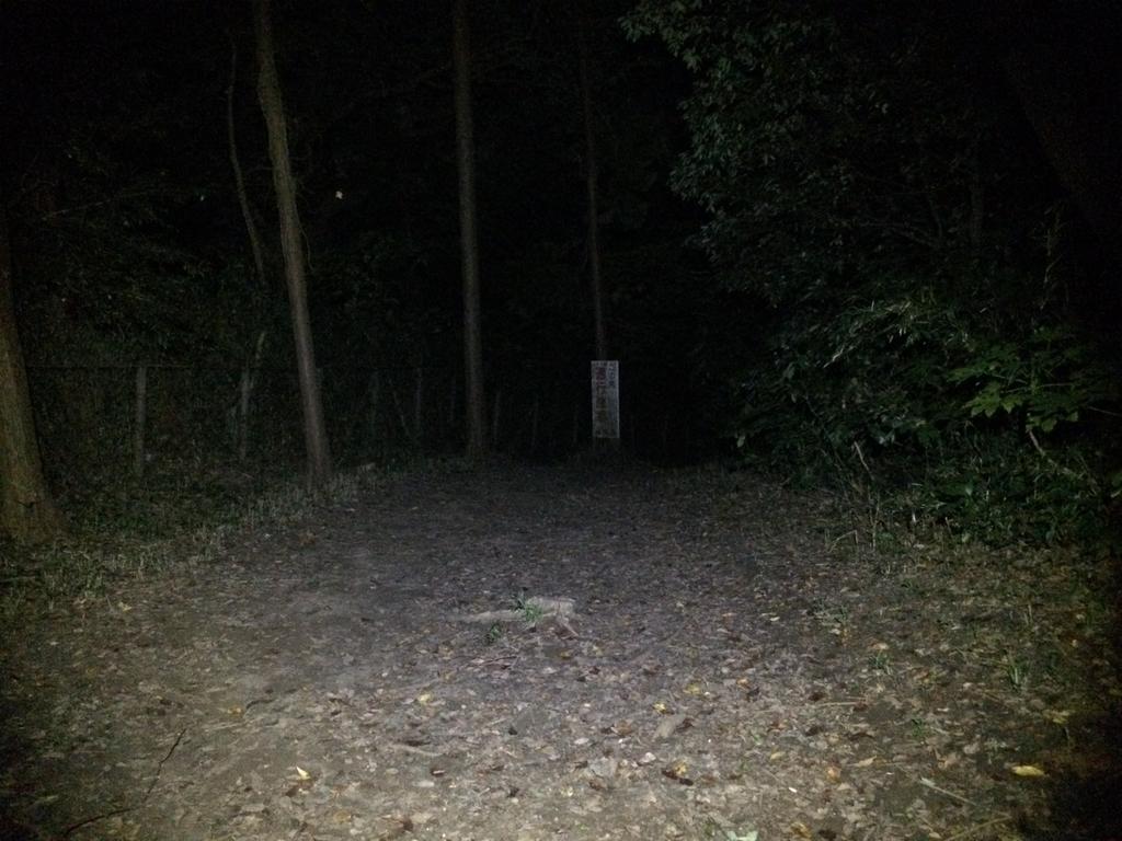 f:id:trail1048:20190122083046j:plain