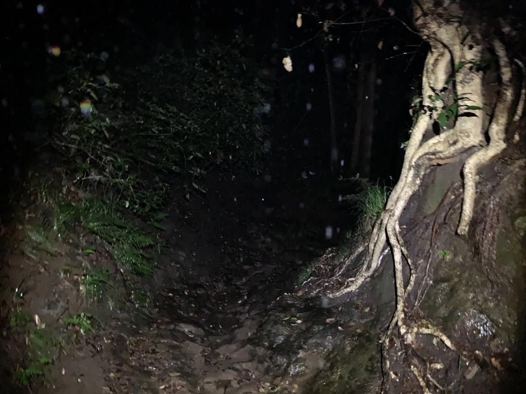 f:id:trail1048:20190122085009j:plain