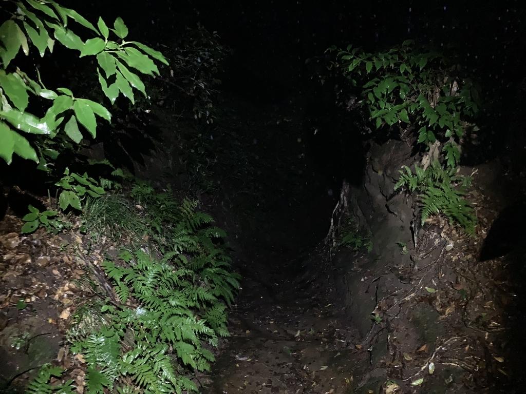 f:id:trail1048:20190122091035j:plain