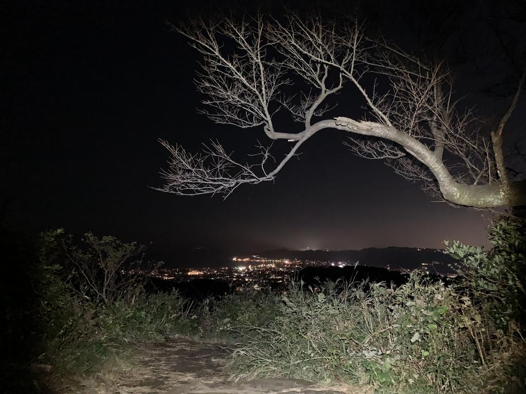 f:id:trail1048:20190122091040j:plain