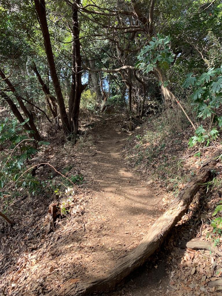 f:id:trail1048:20190228082321j:image