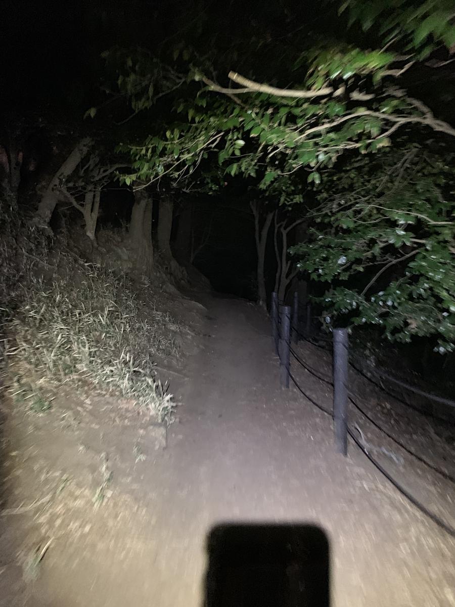f:id:trail1048:20190331171238j:plain