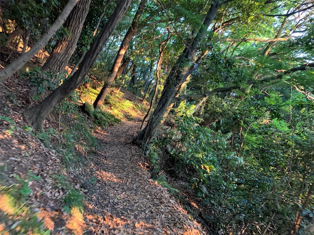 f:id:trail1048:20190531083854j:image